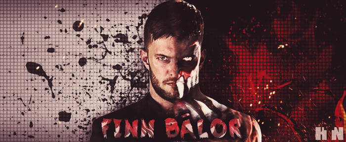 Finn Balor Two Face Banner by HTN4ever