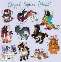 OS Point Adopt Auctions - OPEN by AlaskanCat
