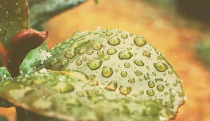 Precipitation by dudeofthedead