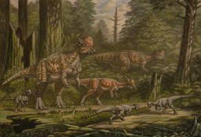 Pachycephalosaurus, Stygimoloch, Sphaerotholus. by ABelov2014