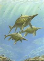 Shonisaurus popularis. by ABelov2014
