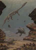 Nothosaurus, Placochelys by ABelov2014