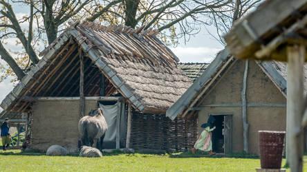 Wolin. Majowka Archeologiczna 2017 -1594 by Wikingowie