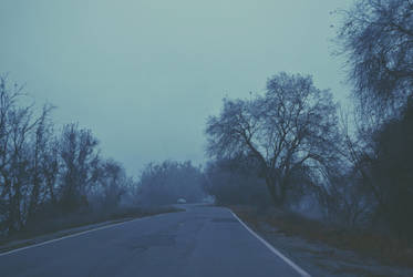 Foggy Roads  by hannahwillover