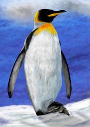 It's a Penguin by Judan