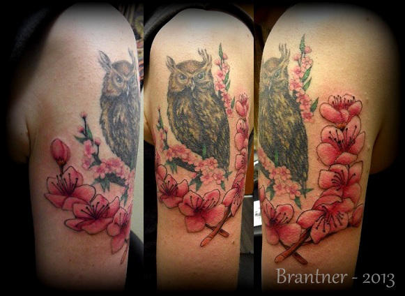 Owl With Cherry Blossoms By Brantnertattoo74 On Deviantart