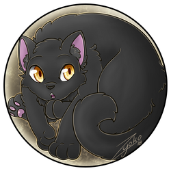 Button Time . Black Cat by Hawkein