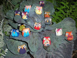 Flock for Glory by songofamazon