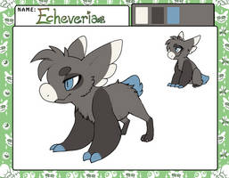 Echeveria | Wyngling App by sidefury