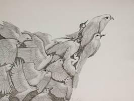 Swoop by eriksherman