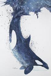 Orca by eriksherman