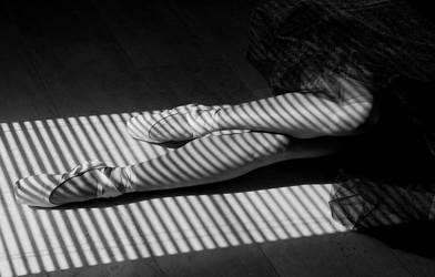Zebra pointes by LadyMartist