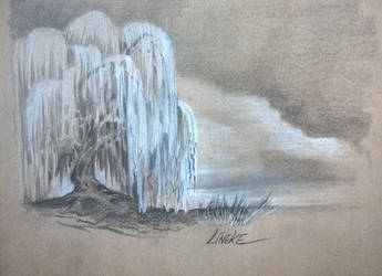 Weeping Willow by Lineke-Lijn