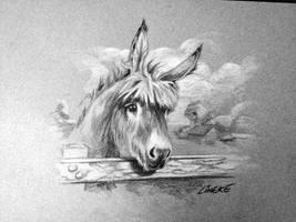 Cute donkey in color pencil free download by Lineke-Lijn