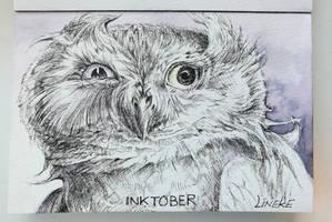 Inktober Funny Owl by Lineke-Lijn