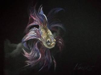 Fight Fish color pencils by Lineke-Lijn