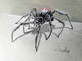 The Black Widow by Lineke-Lijn