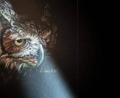 Owl in the night by Lineke-Lijn