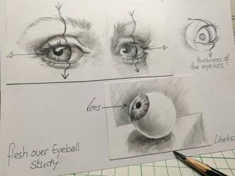 Flesh over Eyeball by Lineke-Lijn