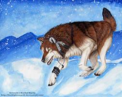 Saidy's Winterland by 8TwilightAngel8
