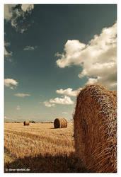 lazy summer days by Dave-Derbis