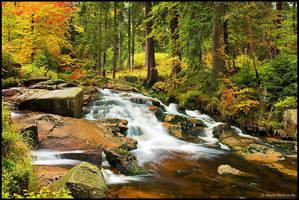 autumn stream by Dave-Derbis