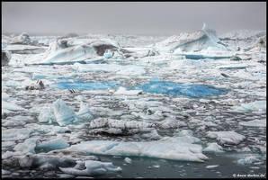 Glacier Bay by Dave-Derbis