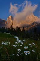 Mystic Meadows by Dave-Derbis