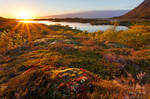 Vatnfjorden Sunset by Dave-Derbis