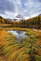 Autumn Reflections by Dave-Derbis