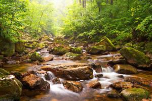 Summer Creek by Dave-Derbis