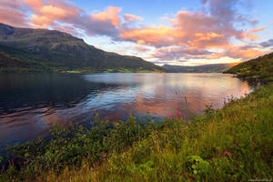 Fjord Norway by Dave-Derbis