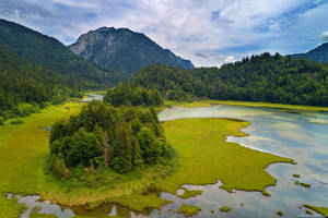 Wild Bavaria by Dave-Derbis