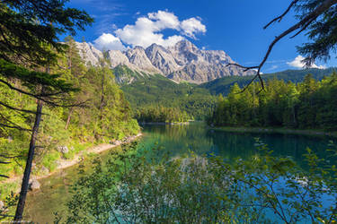 Bavarian Postcard by Dave-Derbis