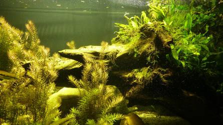 my underworld by Pale-Fish