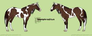 HARPG: Hepaphroditus by Greatalmightyqueen