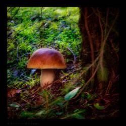 Under the Tree by Spiritofdarkness