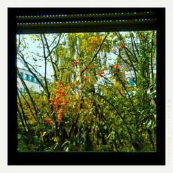 View through Window by Spiritofdarkness