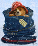 Paddington Bear by niveky