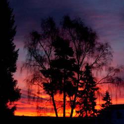Wishing the sun good night by SwirlingLeaf