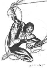 Spiderman by galindoart