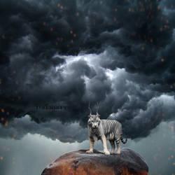 Aurora Lion by LB-digital