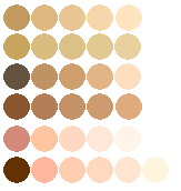 My skin tones. by Pixels-Plz-K-Thnx