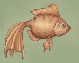 fishy fishy by MandieLaRue