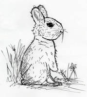 Bunny Rabbit by jamsketchbook