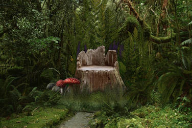 Forest Stump Seat stock by mysticmorning