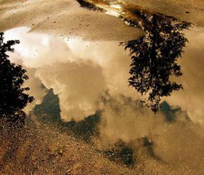 rainy day by ashleymphoto