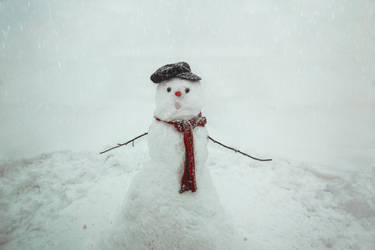 Melting snowman by SiminaArt