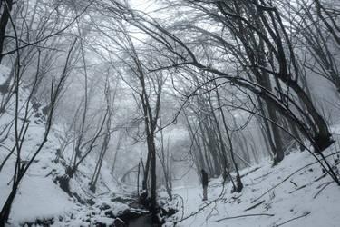 Winter story by SiminaArt