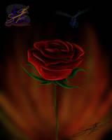 Burning Passion by sammacha